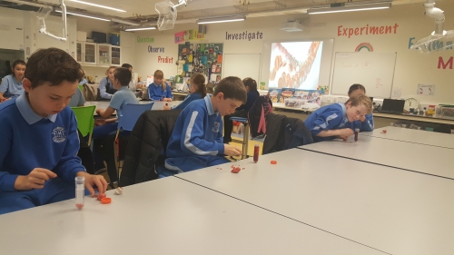 5th Class Visit to UCD
